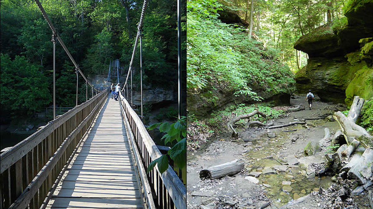 Bridge crossing and creekside trail at Turkey Run State Park.